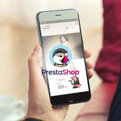 prestashop -ecommerce-web-design-development-chennai-india