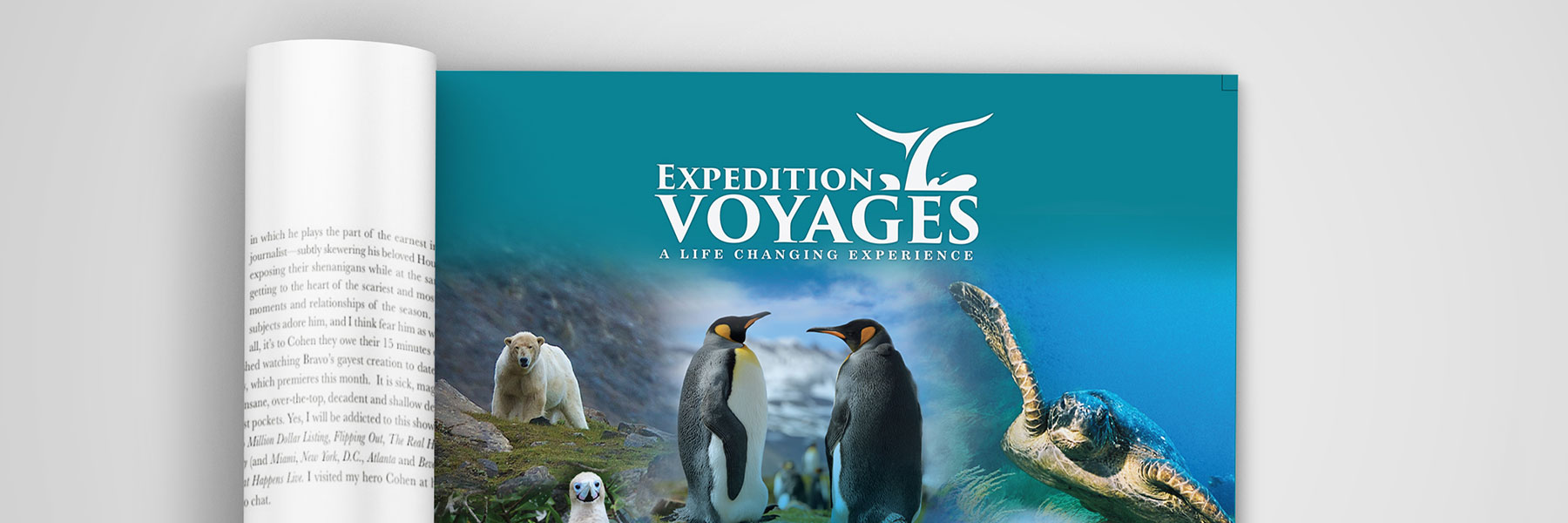 Expedition Voyages